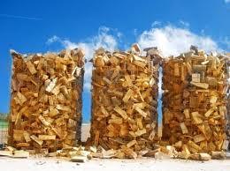 biomassa tronchi di legno