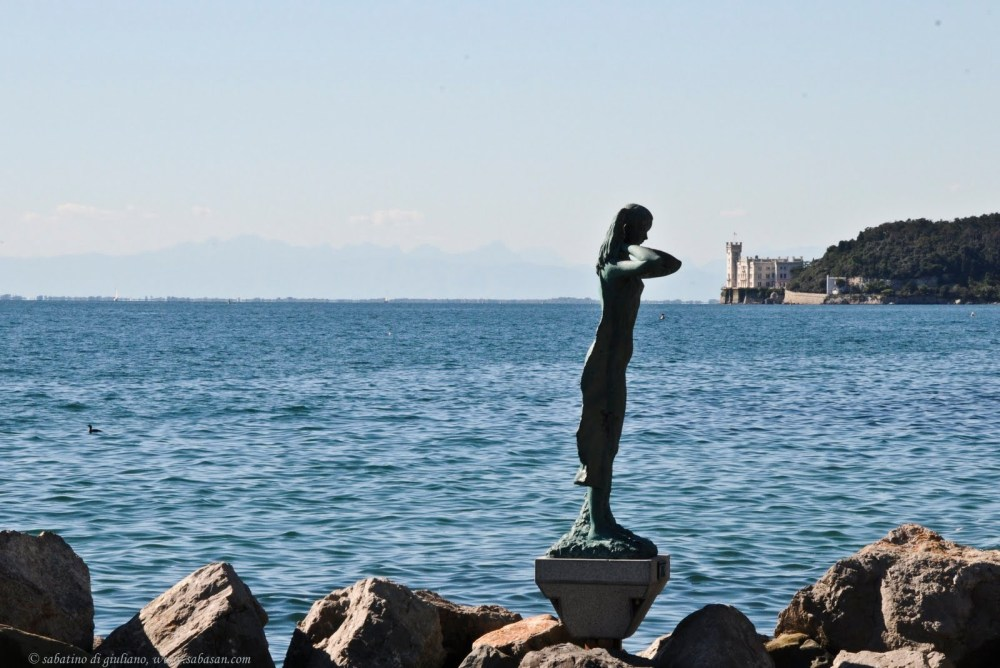 Sprin Technologies: Trieste's response to the Danish giant Novozymes