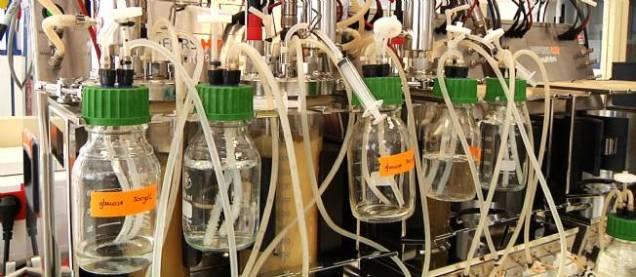 Global Bioenergies' lab